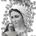 1586 María Madre Dulce