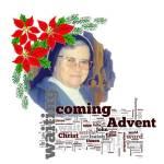 1665 Advent 566